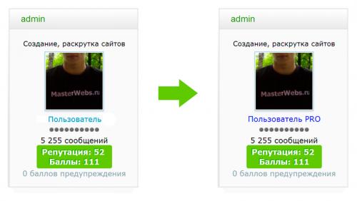 пользователь про.png