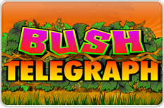 Bush Telegraph.png