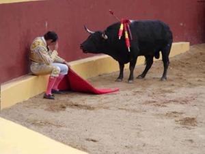 бык и коридор2.jpg