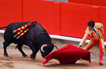 бык и теодор.jpg